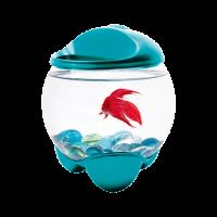 Аквариум для петушка Tetra Betta Bubble 1,8л бирюза