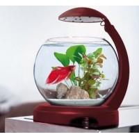 Аквариум Tetra Cascade Globe 6,8л для петушка и золотой рыбки бордовый